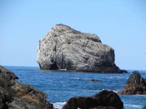 Jade Cove Plasket Point